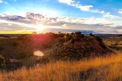 Opal-Country-Landscape-Winton-Qld-d-2021_05_19-03_53_57-UTC